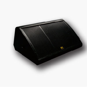 """Single 15"""" Monitor Speaker for Indoor and Outdoor Show (sn152m) pictures & photos"""