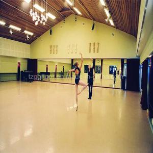 PVC Vinyl Anti-Slip High Quality Dancing Room Flooring pictures & photos