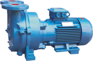 Water Ring Vacuum Pump (2BV) pictures & photos