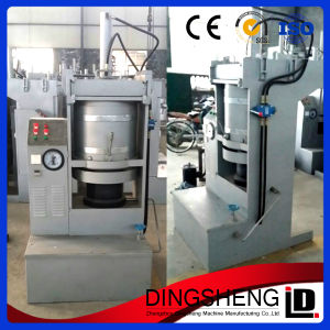 Stainless Steel of Automatic Hydraulic Cocoa Bean Oil Expeller pictures & photos
