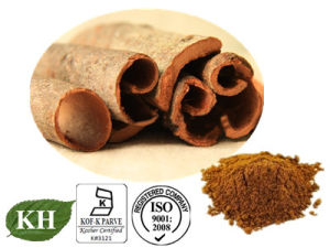 Cinnamon Bark Extract /Cinnamon Bark Extract Powder/Cinnamon Extract Polyphenols pictures & photos
