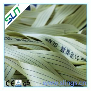 4t X 10m Webbing Sling Safety Factor 6: 1 pictures & photos