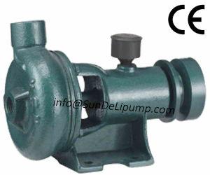 Cheaper Price Cast Iron Marine Pump China