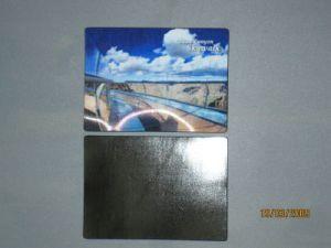 Factory Wholesales 3D Lenticular Scence Fridge Magnet pictures & photos