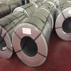 SGS Certificate Galvanzied Iron Rolls Steel Sheet Coil pictures & photos