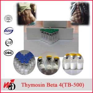 2mg Vial Peptide Tb 500 /Thymosin Beta 4 / Thymosin Beta-4 / Tb4 Peptides pictures & photos