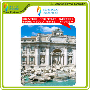 High Strength PVC Coated Flex Banner pictures & photos
