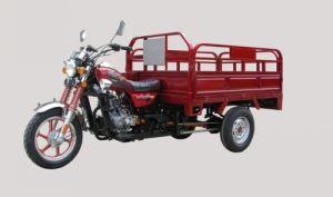 150CC Three Wheel Motorcycle (DF150CM-B)