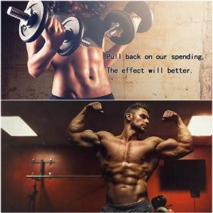 Tren a 10161-34-9 Trenbolone Acetate Powder, Revalor H Muscle Growth Supplements pictures & photos