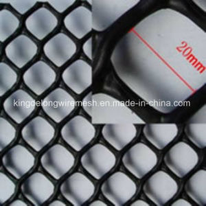 Plastic Wire Mesh From Kdl pictures & photos