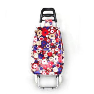 Two Wheels Folding Shopping Trolley Bag
