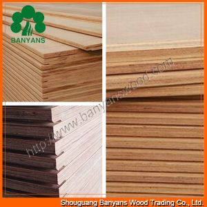 28mm 19 Plies Container Plywood for Flooring