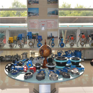 Manual Handle Wafer Worm API Butterfly Valve pictures & photos
