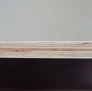 18mm WBP Grade Waterproof Plywood with High Quality pictures & photos