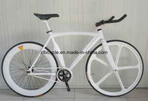 2013 Newly Good Design Carbon Fix Gear Bicycle pictures & photos