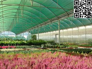 Meyabond Anti Insect Net for Horticulture (MYB-009) pictures & photos