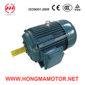 Asynchronous Variable Speed Motor (200L2-12P/6P-9/15KW) pictures & photos