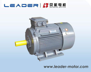 Ye3 Series (IE3, GB2) Premium Efficiency Induction Electric AC Motors