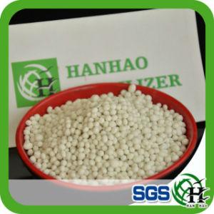NPK Compound D Organic Fertilizer 19-19-19 pictures & photos