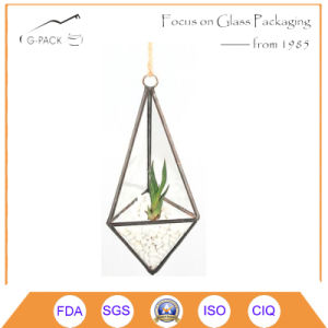 Unique Handmade Geometric Air Planter Glass Terrarium Decoration pictures & photos