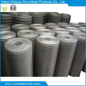 Welded Wire Mesh in Anping of China pictures & photos