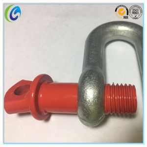 G210 D Shaped Screw Pin Shackle pictures & photos