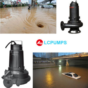 Emergency Sewage Pump for City Waterlogging pictures & photos