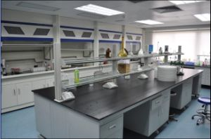 Dental Laboratorybench / Electronics Laboratory Island Bench pictures & photos
