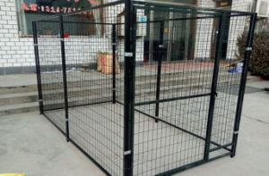 Dog Run Cage, Pet Cage pictures & photos
