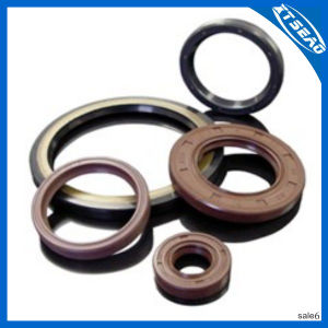 Viton Oil Seals/Mechanical Seals pictures & photos
