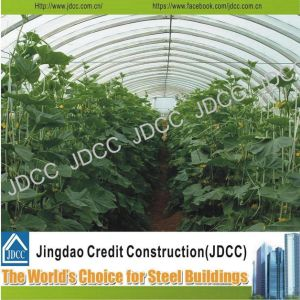 Galvanized Light Steel Structure Vegetable Greenhouse pictures & photos