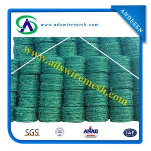 Hot DIP Galvanized /Electric Galvanized /PVC Coated Barbed Wire pictures & photos