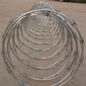 Contact Supplier PVC Coated Galvanized Razor Barbed Wire Fences pictures & photos