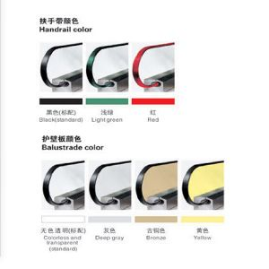 Outdoor Type Escalator Step Width 600mm~1000mm pictures & photos