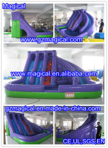 Inflatable Water Slide with Purple Color (MIC-872) pictures & photos