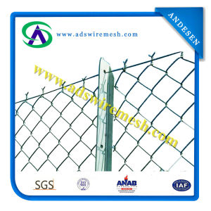 Chain Link Fence Rolls (Factory ISO9011) pictures & photos
