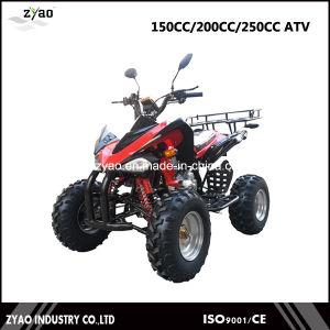 Gy6 Automatic 150cc Kawasaki Quad, 200cc ATV Gy6 Quad Bike Hot Sale pictures & photos