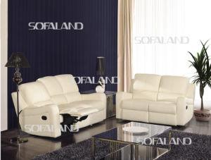 Funcational Sofa (C852) pictures & photos