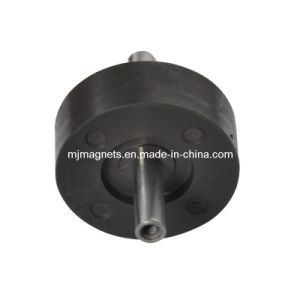 Plastic Injection Bonded Ferrite Magnetic Rotor