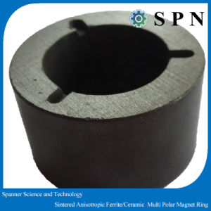 Hard Ferrite for Pump Sintered Multipole magnet pictures & photos