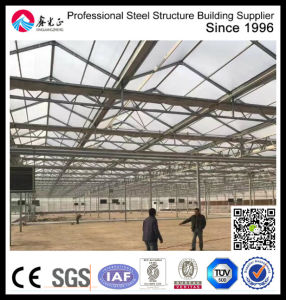 Steel Structure Flower Greenhouse pictures & photos