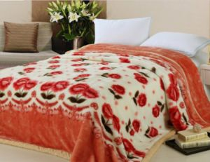 Best Price Blanket in China Hot Sale