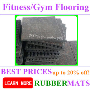 Recycle Rubber Bricks Shock Absorbing Flooring Mat Crossfit Gym pictures & photos