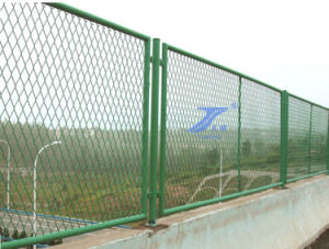 Anti-Throwing Bridge Expanded Fence (TS-L125) pictures & photos