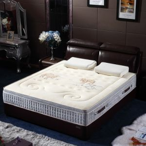 Latest Spring Mattress pictures & photos