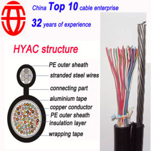 30 Pair Shielded Aerial Self-Supporting Telephone Cable pictures & photos