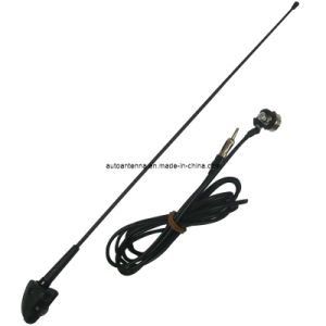 Fiber Glass with Am/FM Function Passive Car Antenna pictures & photos