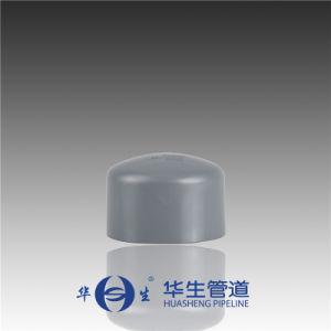 Huasheng Plastic Dn32-100 CPVC DIN Standard End Cap pictures & photos