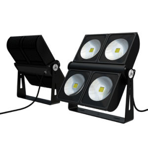 Architectural Waterproof IP65 COB Power 300W LED Flood Light Module pictures & photos