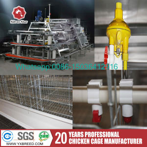 Poultry Equipment Suppliers in South Africa Egg Layer Cages Sale pictures & photos